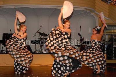 Flamenco Tanzschule Matschek